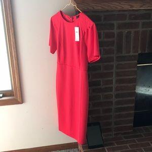 NWT Ann Taylor gorgeous red draped sleeve dress.